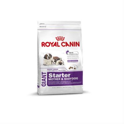 Royal Canin Giant Starter до 2-месячного возраста.