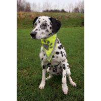 Косынка на шею для собак TX 30121-30123