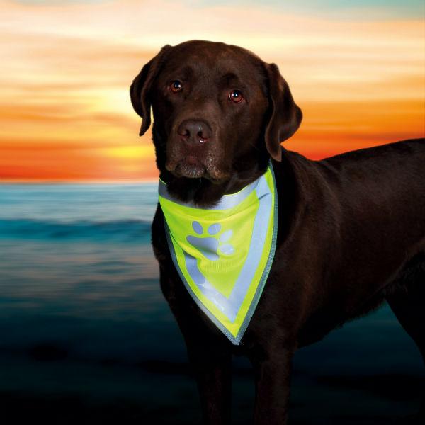 Косынка на шею для собак TRIXIE TX 30121-30123