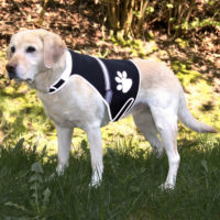 Жилет безопасности для собак TX 30215-30217