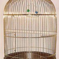 Золота круглая клетка для птиц Рондо 50*d50