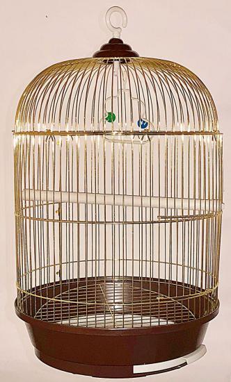 Зотая клетка с куполом для птиц