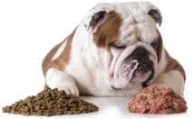 влажный корм корм для собак и щенков