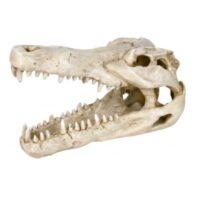 Грот для аквариума, череп крокодила Трикси TX-8712 (Trixie), 14 см