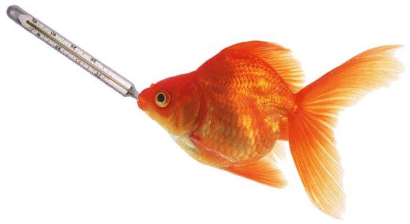 обогреватель для аквариума купить в Днепре