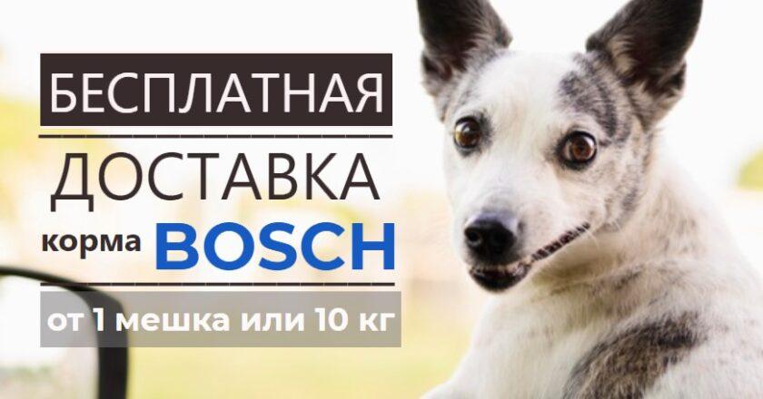 акция бесплатная доставка корм бош для собак